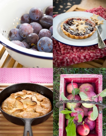 Apple Galette and Plum Tart