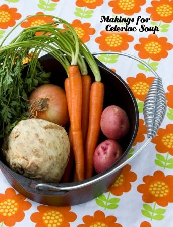 Easy Celeriac Soup