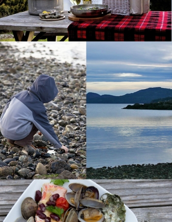 An Oceanside Seafood Medley in the San Juan Islands