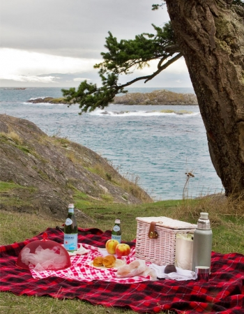Picnic With A View (Inspiration)