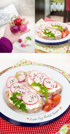 Spicy Radish Tartine