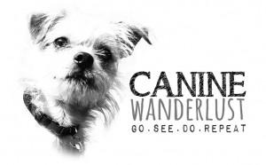 Canine Wanderlust