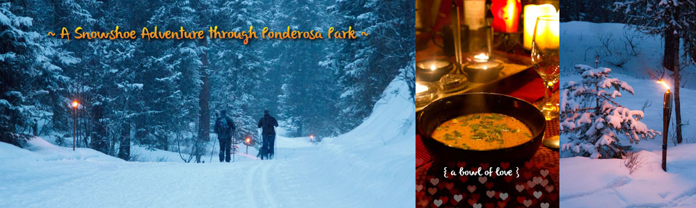 {McCall, ID } A Winter Culinary Adventure in the Forest ♥