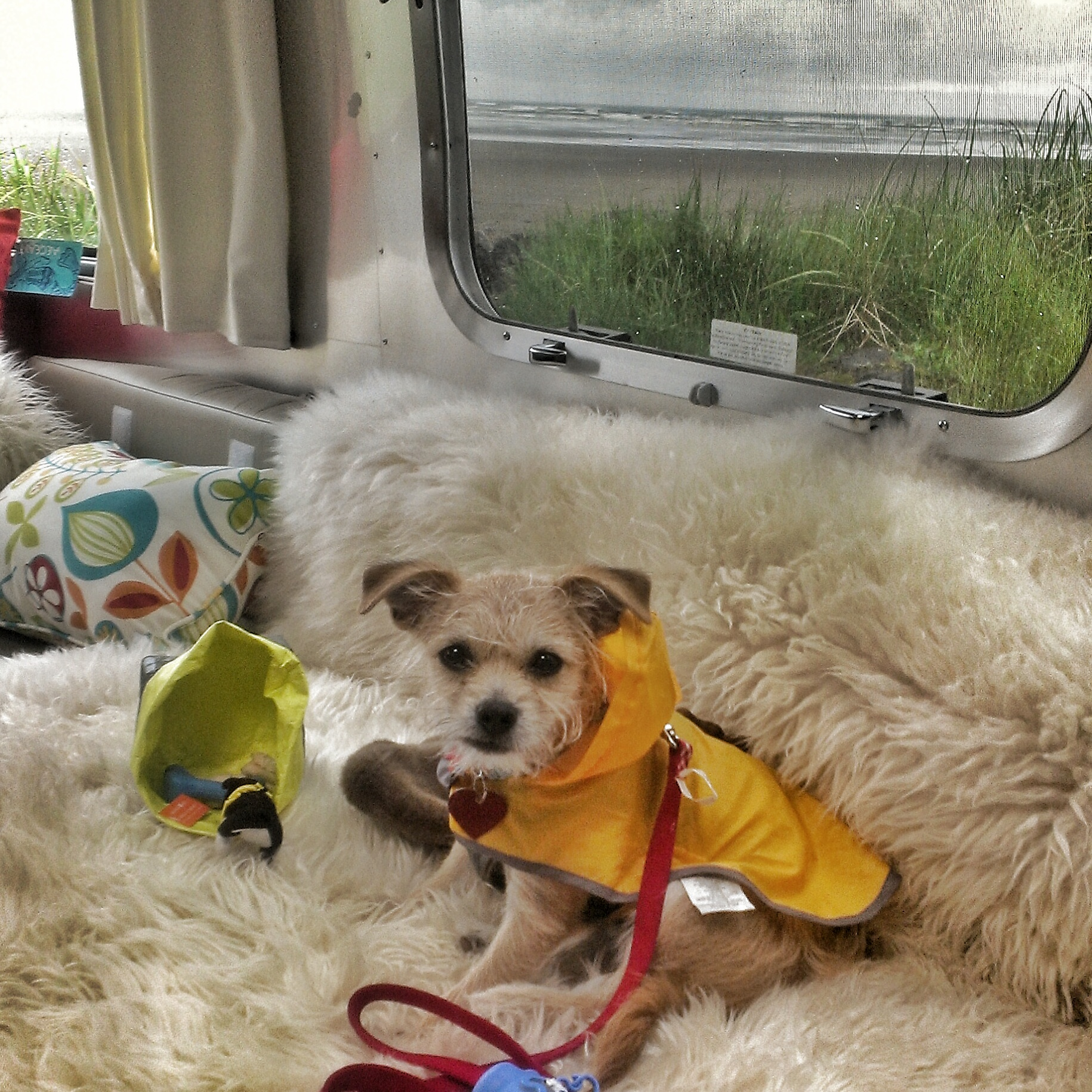 Oliver in his raincoat