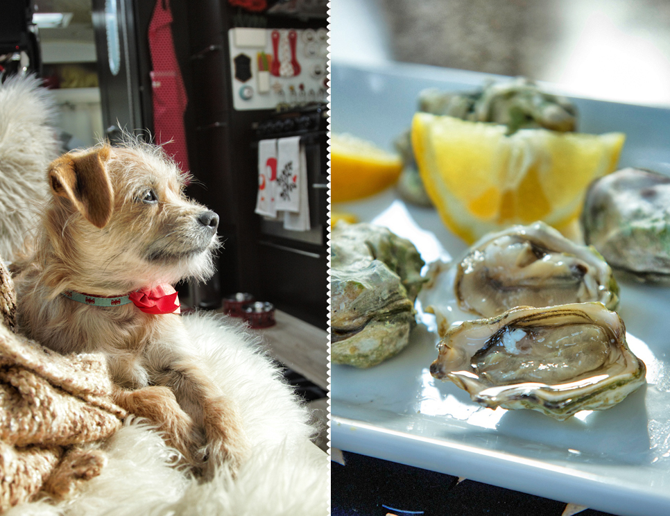 Oysters in our Airstream