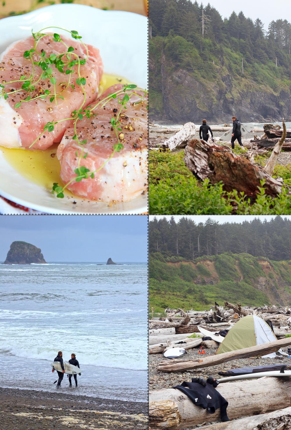 Surfs up Washington Coast