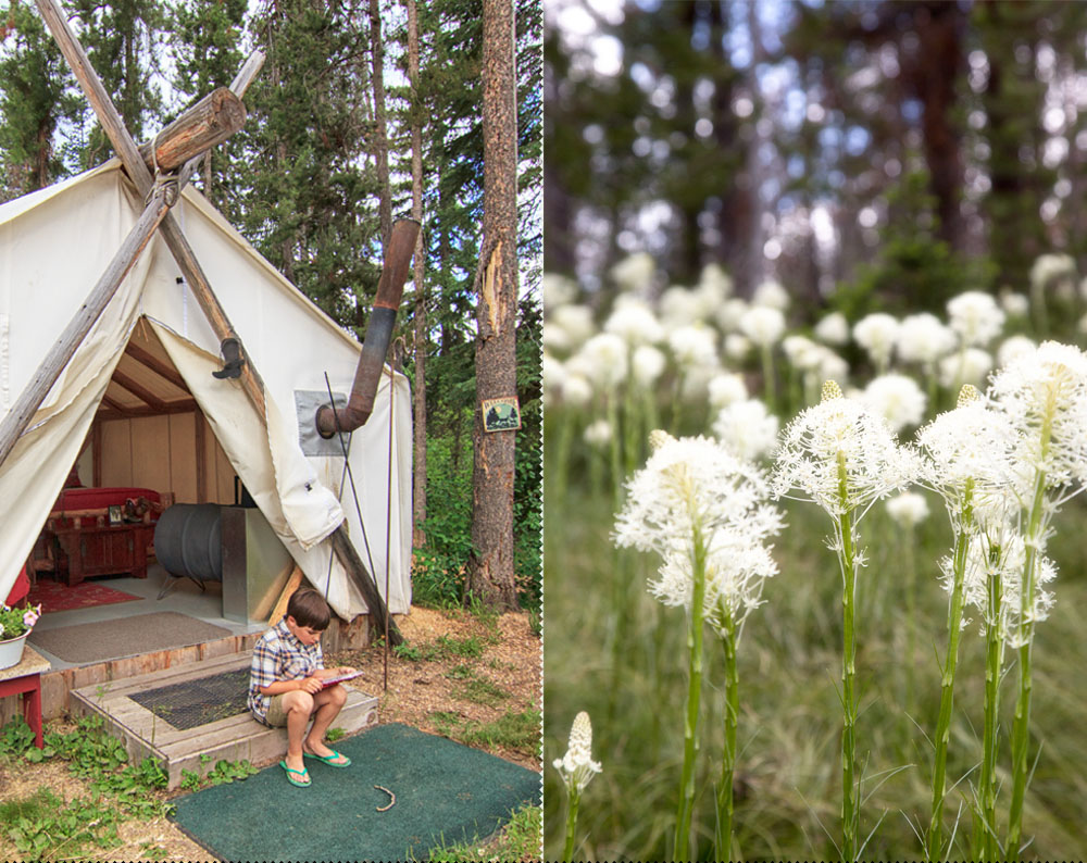 Storm Creek Outfitters and Glamping in the Bitterroot Mountains of Idaho