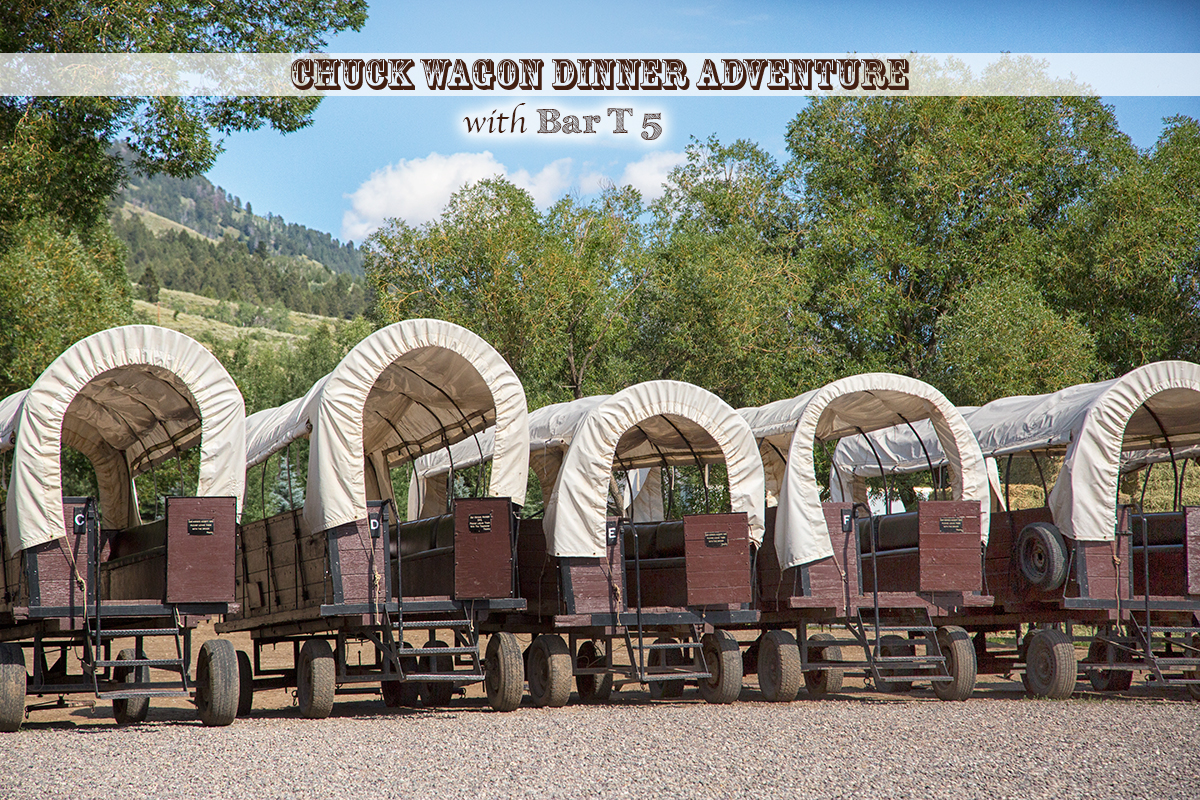 Chuck Wagon Dinner Adventures in Jackson Hole with Bar T 5