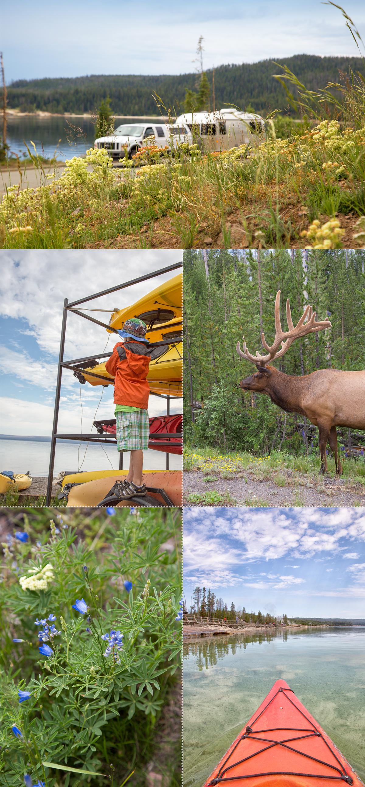 Yellowstone National Park Airstream Road Trip