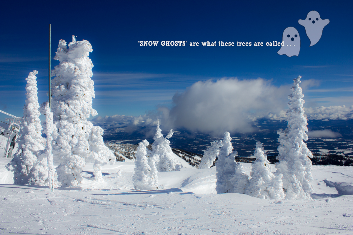 Schweitzer Mountain Resort Snow Ghosts