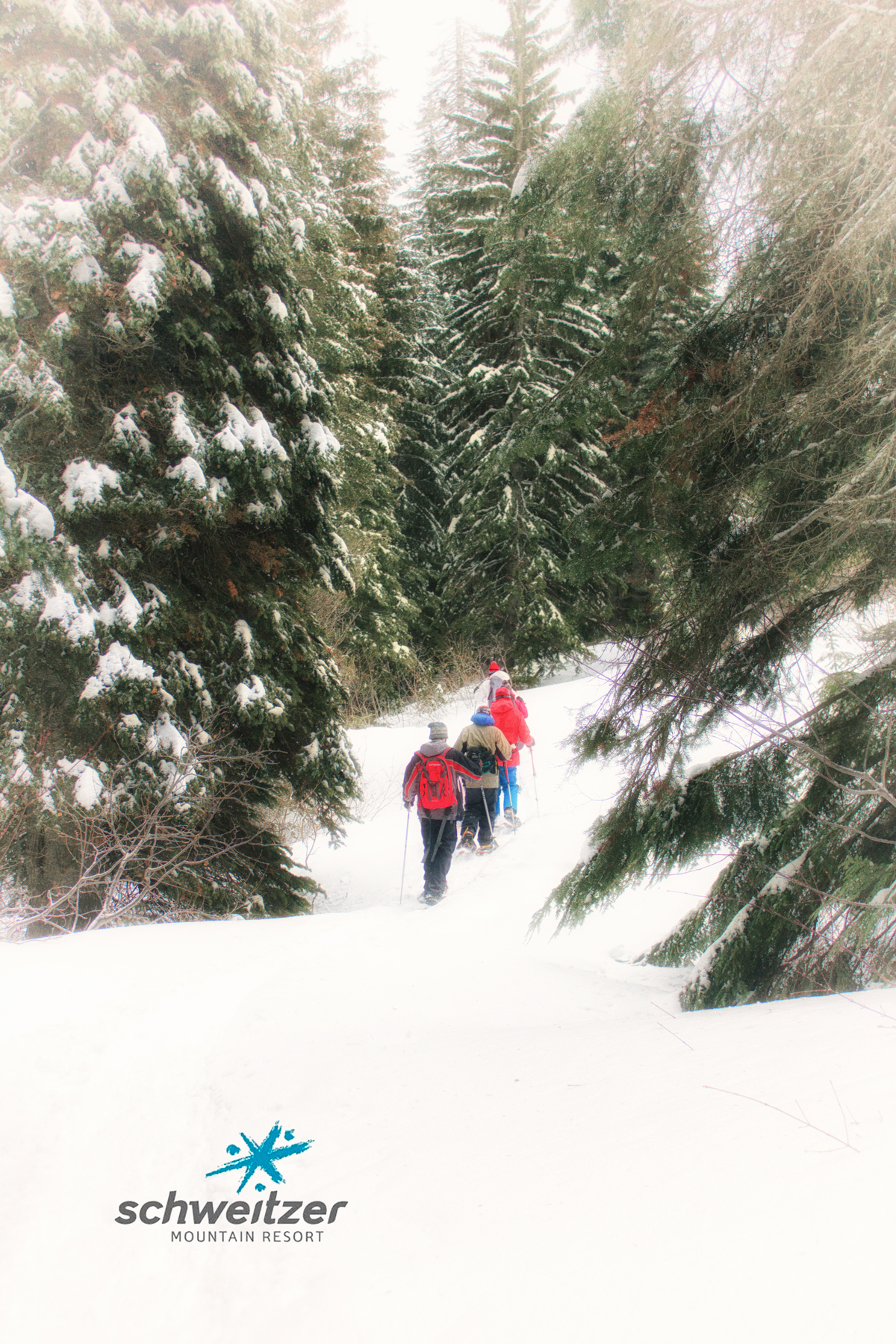 Guided Snowshoe Hikes with Schweitzer Mountain Resort in Beautiful Idaho