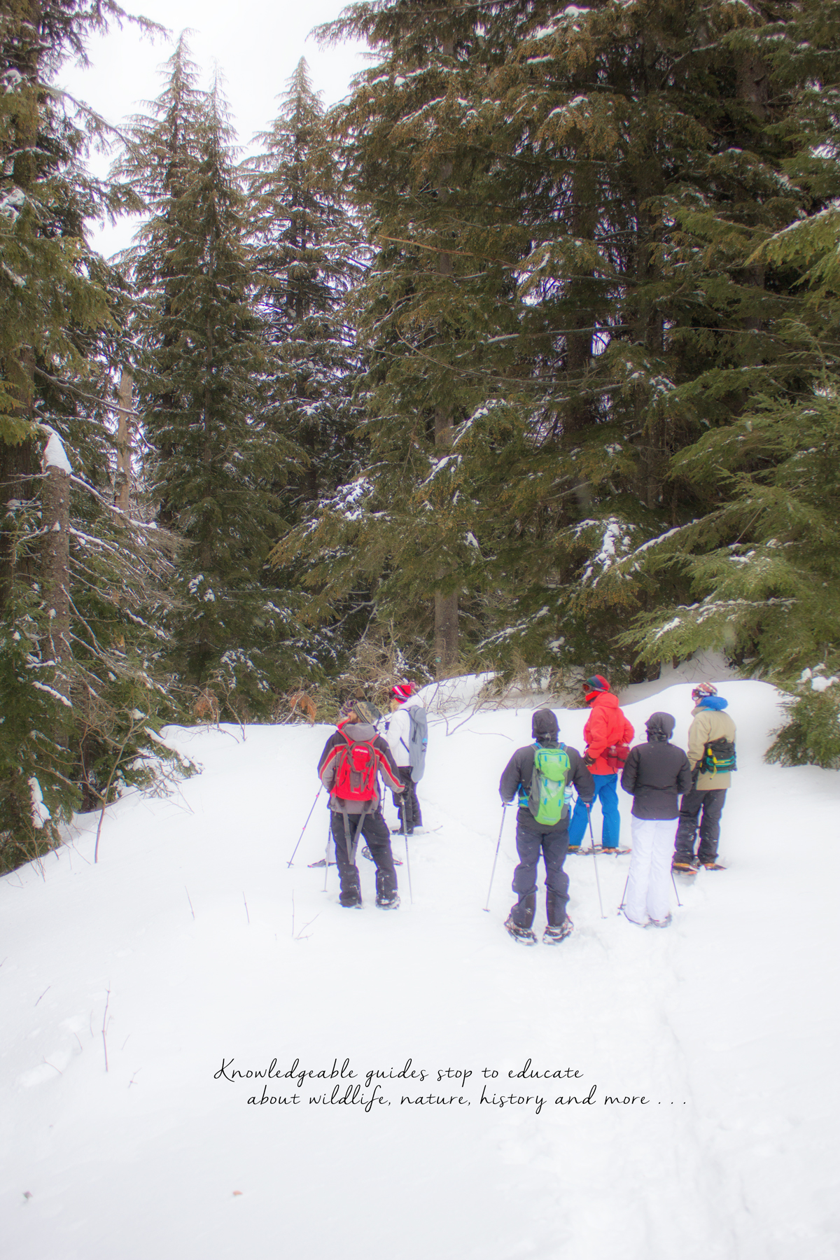 Guided Snowshoe Hike and Fondue Dinner at Schweitzer Mountain Resort in Idaho via J5MM.com