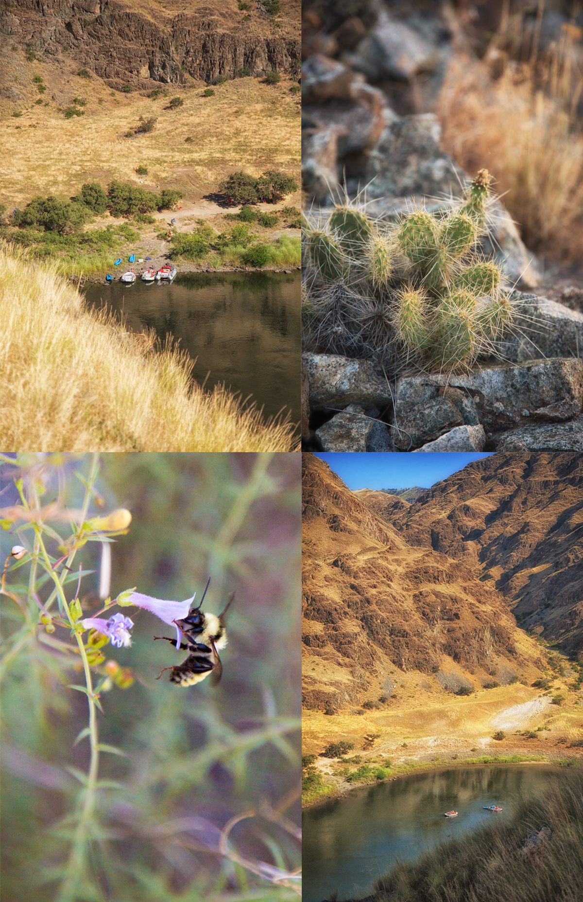 Rafting in Hells Canyon via J5MM.com