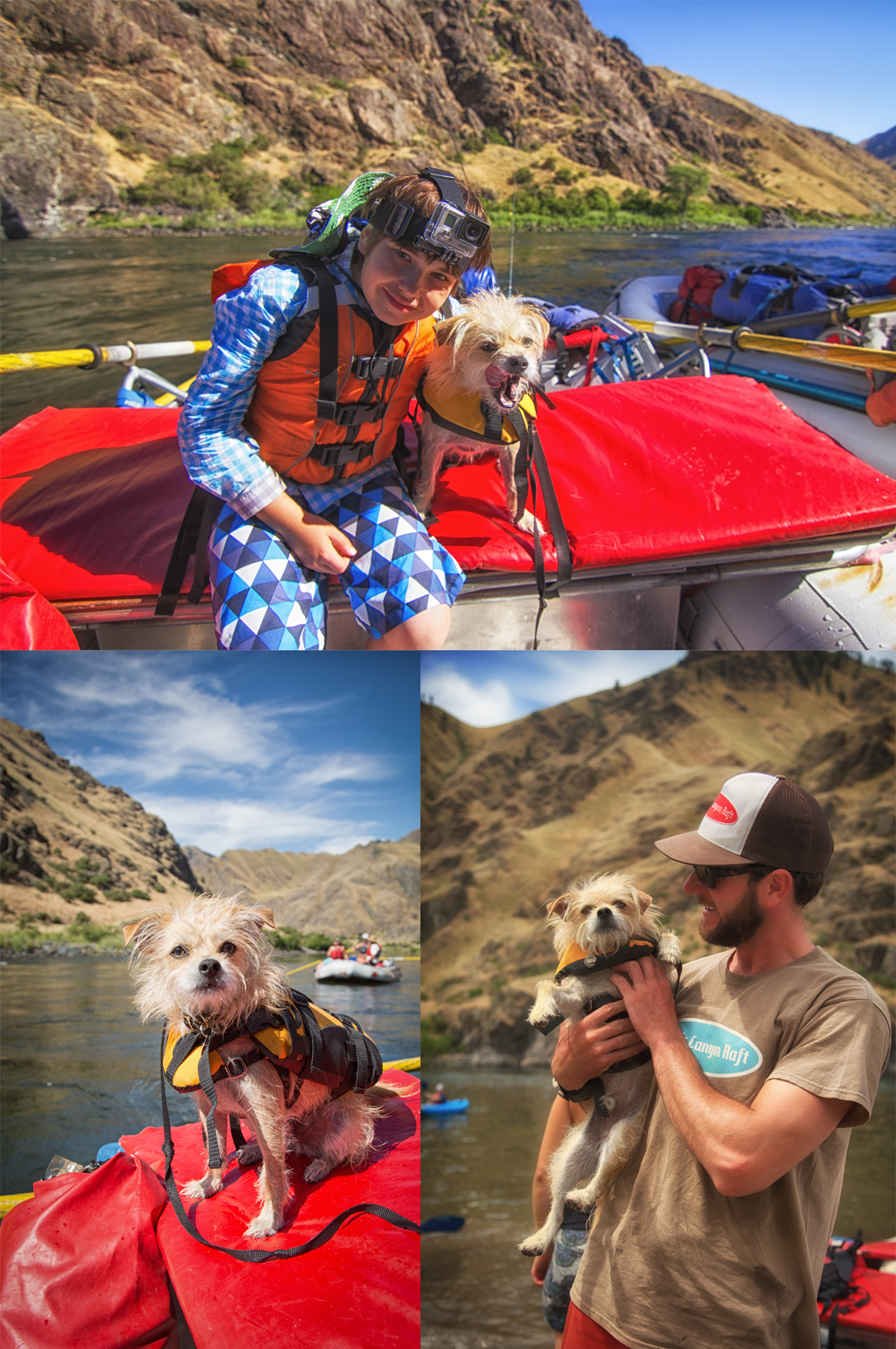 White Water Rafting with your dog in Hells Canyon via J5MM.com
