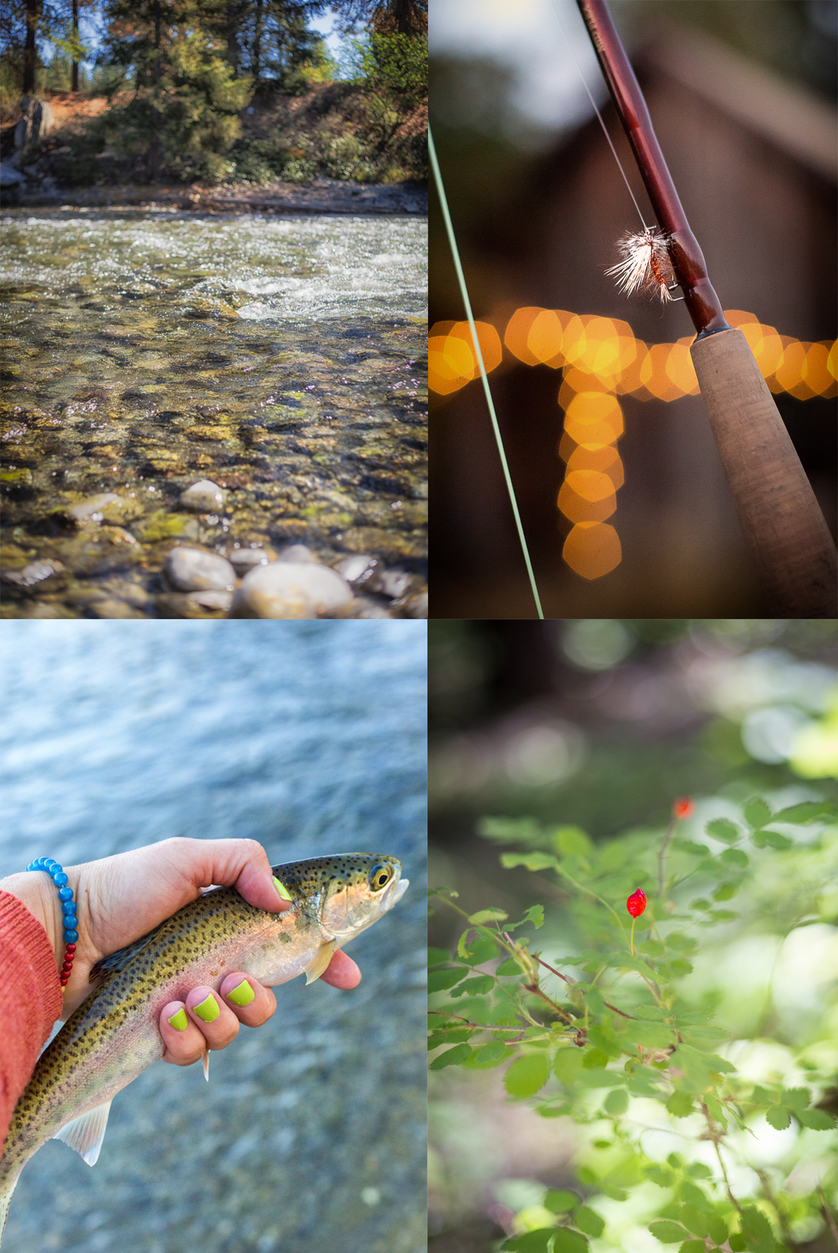 Fly fishing the Cle Elum River in Washington State via J5MM.com