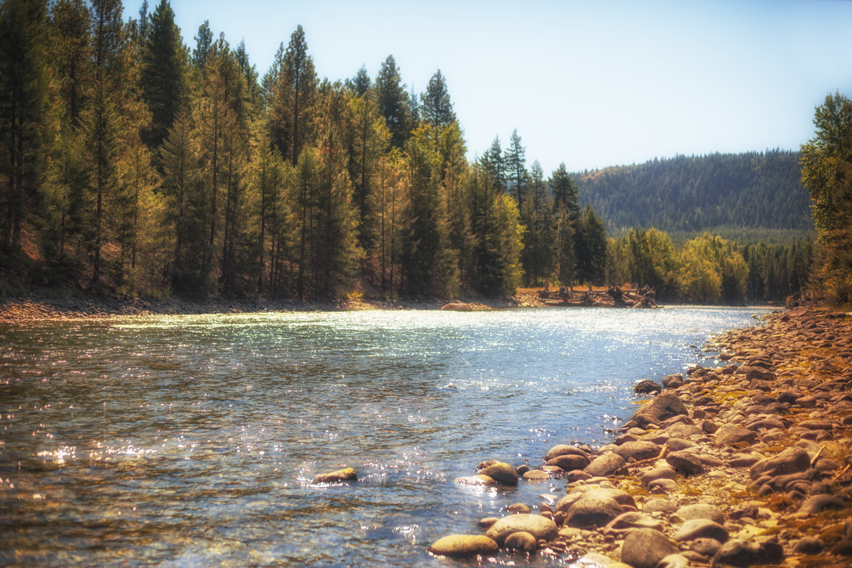 Cle Elum River, Washington Fly Fishing Mecca