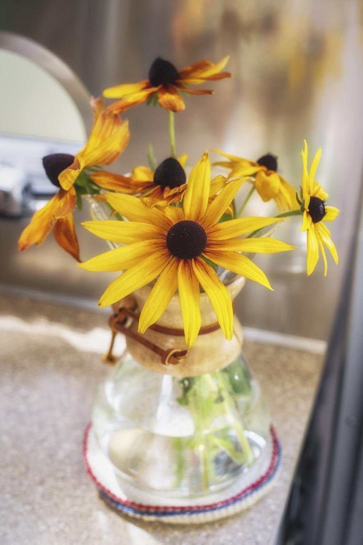 Chemex Flower Vase via J5MM.com
