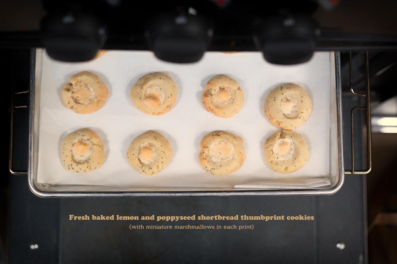 Lemon Poppyseed Shortbread Christmas Cookies via J5MM.com // Airstream Baking