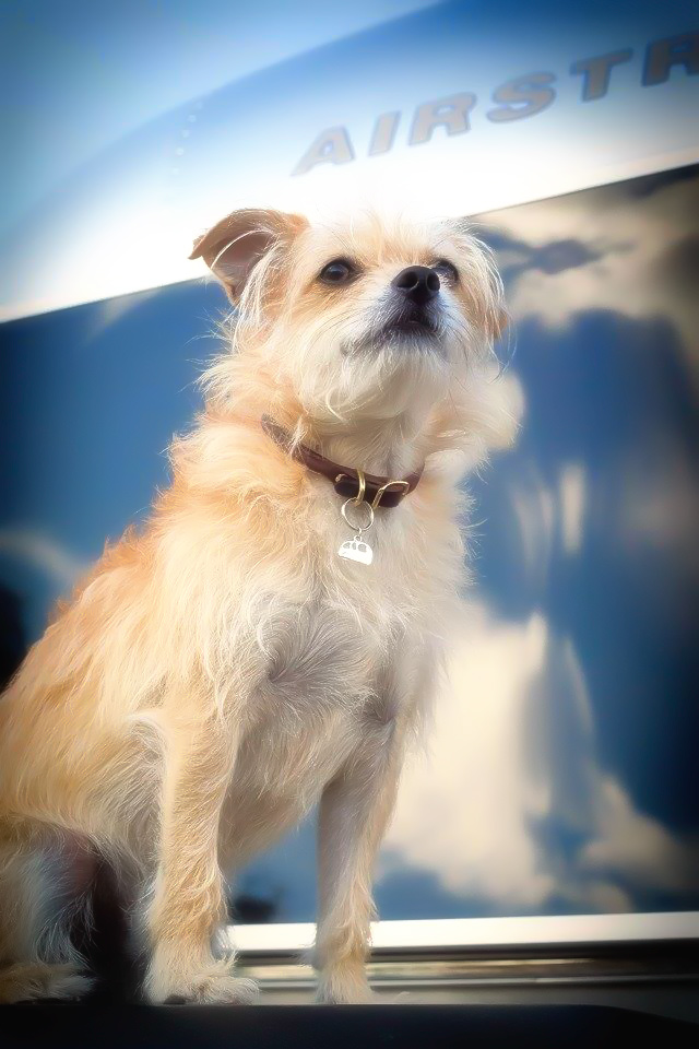 Oliver wearing his Lucky Little Trailer Pendant from Kristiana Spaulding of SilverTrailer.com // #Airstream