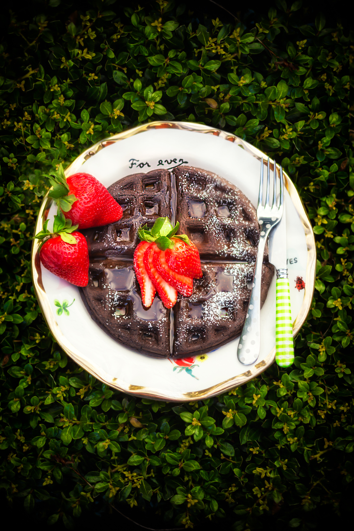 Chocolate Waffles via J5MM.com