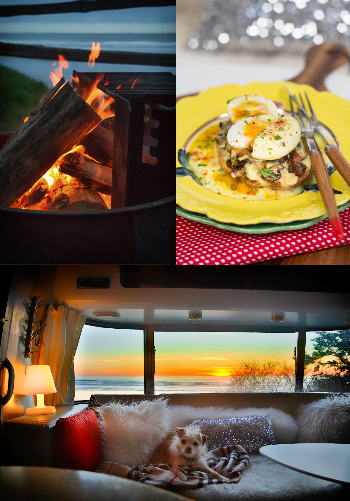 Caramelized Mushrooms and Poached Egg Toasts with Lemony Hollandaise Sauce via J5MM.com // #airstream