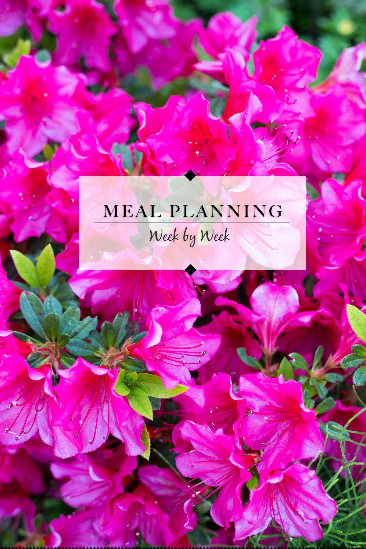 Meal Planning for RV Trips via J5MM.com // #AirstreamLifestyle