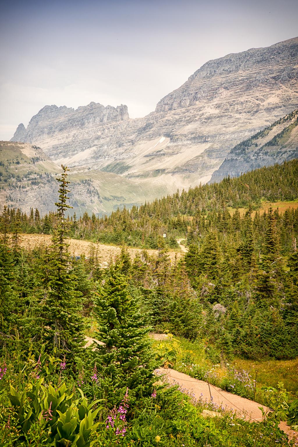 Glacier National Park Monica Bennett (33 of 36)
